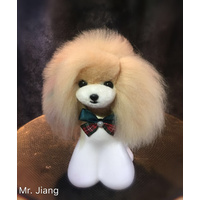Mr. Jiang Teddy Bear Head Hair / Model Dog [Champagne]