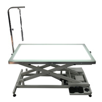 SHERNBAO Electric Lifting Table with LED Light