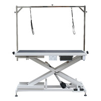 AEOLUS Low-Low PRO Electric Lifting Table with Air Switch