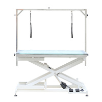 AEOLUS Electric Lifting Table with LED Light