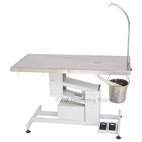 Economic Electric Lifting Vet Operation Table