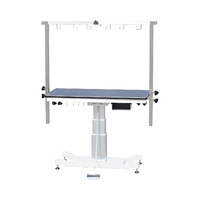 AEOLUS Rectangle Grooming Table with Vertical Lift Column