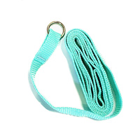 Kennel Lead / Slip Lead [Teal] 13mm(W) x 1200mm(L)